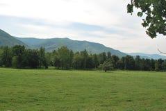 Lato góry krajobraz Zdjęcia Royalty Free