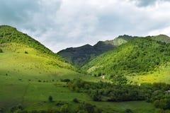 Lato góry zielonej trawy i niebieskiego nieba krajobraz obraz stock