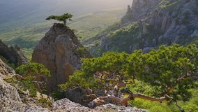 Lato halna dolina w Crimea zbiory wideo