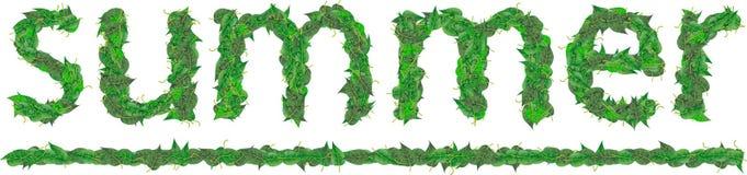 Lato inskrypcja zieleń liście z kroplami Zdjęcie Royalty Free