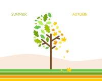 Lato jesień Zdjęcie Royalty Free