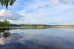 Lato jeziorny głąbik przy rankiem obrazy royalty free