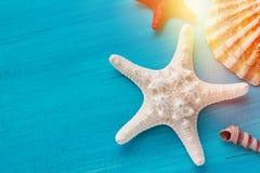 Lato kąta granica morze skorupy przegrzebek i gwiazda łowi na błękitny drewnianym Fotografia Stock
