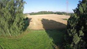 Lato końcówki ziemi uprawnej pola i łąka, widok z lotu ptaka zbiory