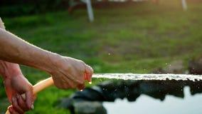 Lato kobiety podlewania węża elastycznego kwiatu ogrodowy uśmiechnięty słoneczny dzień 4K zbiory