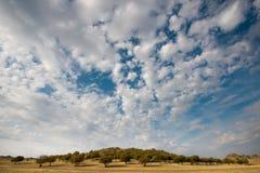 Lato krajobraz Fotografia Stock