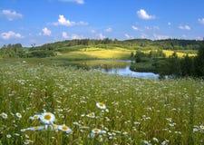 Lato krajobraz Obrazy Royalty Free
