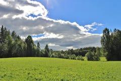 LATO krajobraz Zdjęcia Stock