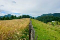 LATO krajobraz Obraz Stock