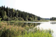 Lato krajobraz blisko jeziora obrazy stock