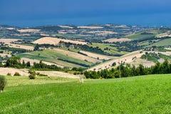 Lato krajobraz blisko Monterubbiano Fermo, marsze Zdjęcia Royalty Free