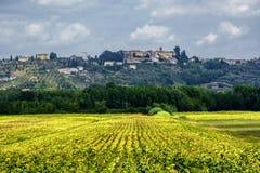 Lato krajobraz blisko Volterra, Tuscany Fotografia Royalty Free