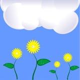Lato krajobraz, chmurnieje i kwitnie Obraz Stock