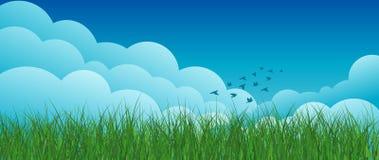 Lato krajobraz, niebo, chmury, ptaki Obrazy Royalty Free