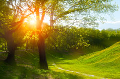 Lato krajobraz przy lato zmierzchem - pogodna kolorowa lato natura lata tła sunny Zdjęcia Royalty Free