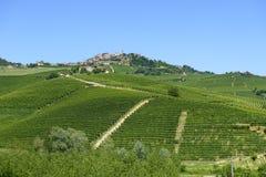 Lato krajobraz w Langhe (Włochy) Zdjęcia Royalty Free