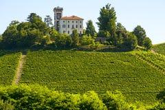 Lato krajobraz w Langhe (Włochy) Obraz Royalty Free