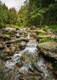 LATO krajobraz Wycieczkować Plenerowego pojęcie Skalista siklawa w górach Balea siklawa Obrazy Royalty Free