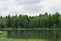 Lato krajobraz z jeziorem, lasem i niebem, Obrazy Stock