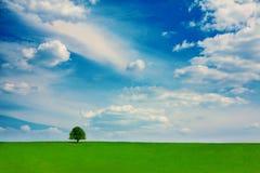 Lato krajobrazowy wibrujący kolor Obrazy Royalty Free