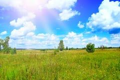 Lato krajobraz z pogodnymi promieniami spada pole od bielu chmurnieje na niebieskim niebie zdjęcie royalty free