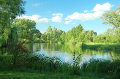 Lato krajobraz z rzeką i chmurami Obrazy Royalty Free