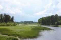 Lato krajobraz z rzeką Fotografia Royalty Free