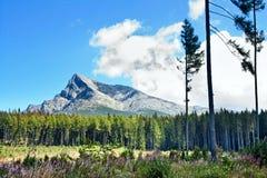 Lato krajobraz z widokiem dalej wspina się Krivan w górach Wysoki Tatras Zdjęcia Royalty Free