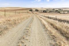 Lato krajobraz z wiejską drogą na letnim dniu obok Fuente De Cantos, prowincja Badajoz, Hiszpania Obrazy Stock