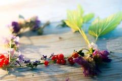 Lato kwiatów i jagod rama dla teksta Fotografia Royalty Free