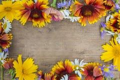 Lato kwiatów rama Fotografia Royalty Free
