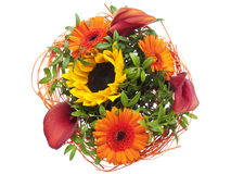 Lato kwiatu bukiet Zdjęcie Royalty Free