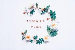 Lato kwiatu tło z składem robić biel róża kwitnie i lato czasu listy dostępny karty eps kartoteki lato Zdjęcie Stock