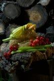 Lato miodu nastrój Zdjęcie Royalty Free