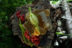 Lato miodu nastrój Fotografia Stock