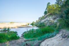 Lato morze bałtyckie Natura, drzewa słońce Podróży fotografia Fotografia Royalty Free
