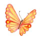 Lato motyl beak dekoracyjnego latającego ilustracyjnego wizerunek swój papierowa kawałka dymówki akwarela Obraz Royalty Free