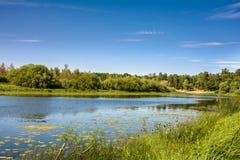 Lato na brzeg rzeki zdjęcie royalty free