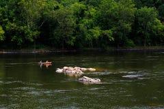 Lato na Delaware Easton Rzecznym Pa Zdjęcia Stock