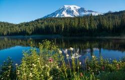 Lato na Mt Dżdżysty, Odbicie jezioro Fotografia Royalty Free