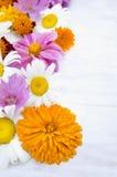 Lato ogród kwitnie na białym drewnianym tle obrazy stock