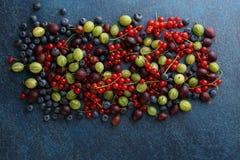 Lato organicznie jagody na kamiennym tle Zdjęcia Royalty Free