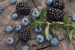Lato organicznie jagody zdrowa żywność jagody mieszany świeży czernica, czarna jagoda i nowi liście, Zdjęcia Stock