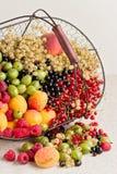 Lato owoc i jagody - czerwień, czarny i biały rodzynki, raspb Obrazy Stock