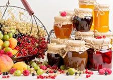 Lato owoc i jagody - czerwień, czarny i biały rodzynki, raspb Zdjęcie Stock