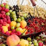 Lato owoc i jagody - czerwień, czarny i biały rodzynki, raspb Zdjęcia Stock