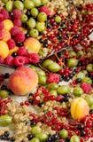 Lato owoc i jagody - czerwień, czarny i biały rodzynki, raspb Obraz Royalty Free