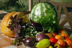 Lato owoc i warzywa obraz stock
