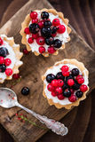 Lato owoc porzeczkowy tarta, koszt stały Zdjęcie Stock
