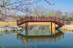 Lato pa?ac krajobraz Pekin w wczesnej wio?nie zdjęcie stock